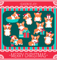 christmas set with cute corgi vector image vector image