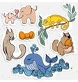 cute animals cartoon chameleon whale vector image vector image