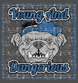 grunge style quote about young and dangerous vector image vector image