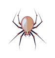 illuastration of big spider vector image