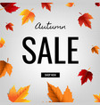 autumn sale poster with leaf vector image vector image