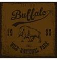 buffalo vintage outdoor vector image vector image