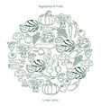 Collection of fruit and vegetables in the shape of vector image vector image