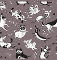 playing dogs seamless pattern funny lap-dog vector image vector image