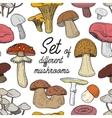 set different mushrooms pattern vector image