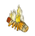 traditional burning wooden stick color vector image vector image