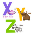 animal alphabet x y and z vector image