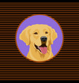 happy golden labrador retriever portrait of a dog vector image