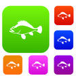 rose fish sebastes norvegicus set collection vector image vector image
