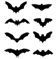 bats 2 vector image vector image