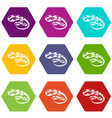 king snake icons set 9 vector image vector image