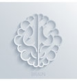 modern brain light background vector image vector image