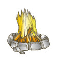 traditional burning campfire color vector image vector image