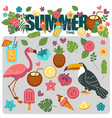 summer poster of exotic tropical birds and flower vector image