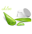 aloe leaves and cream vector image vector image