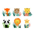 baby animal cartoon characters with floral plants vector image