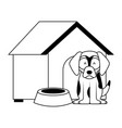 dog wooden house bowl vector image