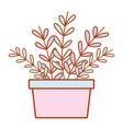 houseplant decoration cartoon vector image