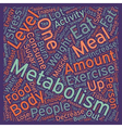 Quick Tips to Boost Your Metabolism text vector image vector image