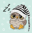 sleeping cute owl vector image vector image
