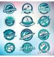 summer surfing labels badges emblems vector image