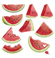 a set of pieces of watermelon collection vector image