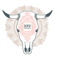 Cow Skull with ornament isolated on mandala vector image