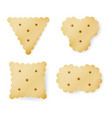 cracker in different shapes yellow cookie vector image vector image