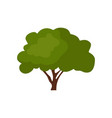green trees icon design isolated on white vector image vector image