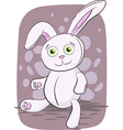 Isolated of rabbit toy vector image vector image