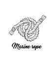 marine rope black ink sketch vector image