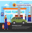 Petroleum And Gas Station vector image vector image