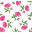 seamless floral pattern with of watercolor peony vector image