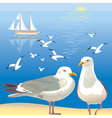 Seascape with seagulls vector image vector image