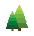 Two fir tree vector image