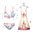 Watercolor lingerie hand painted vector image