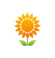 Sunflower-380x400 vector image