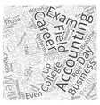 Accounting Auditing Careers Word Cloud Concept vector image vector image