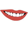 beautiful smile teeth vector image vector image