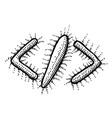 cartoon image of code icon code symbol vector image