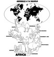 educational african animals color book vector image