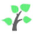 hexagon halftone flora plant icon vector image