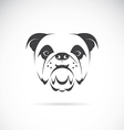 image of an dog face vector image vector image