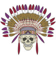 skull with indian headdress vector image