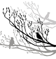bird at tree silhouettes vector image