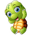 cute turtle cartoon isolated on white background vector image vector image