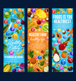 healthy food vitamins and fruits vector image vector image