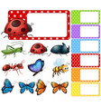 label template with different types of insects vector image vector image