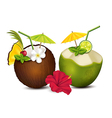 Two tropical cocktails vector image vector image