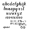 alphabet Hand drawn ink vector image
